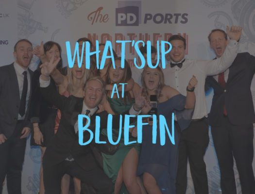 bluefin sup wins northern exporter of the year at pd ports